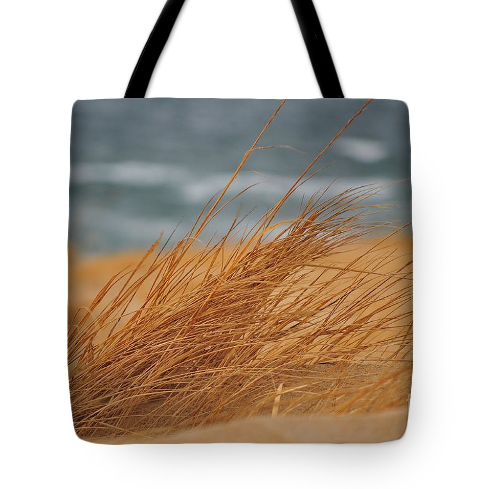 Beach Tote Bag featuring the photograph Golden View by Catherine Reusch Daley