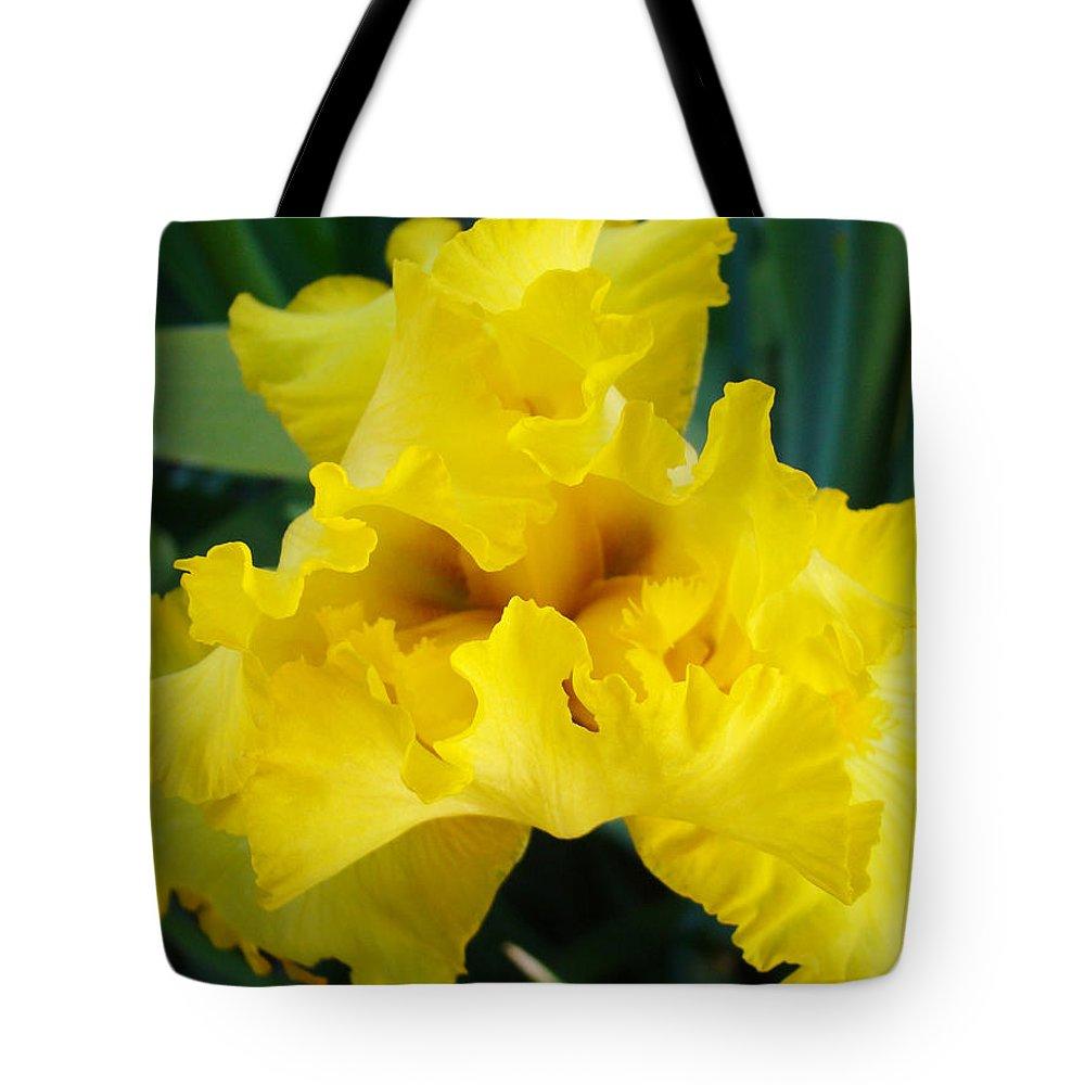 �irises Artwork� Tote Bag featuring the photograph Golden Yellow Iris Flower Garden Irises Flora Art Prints Baslee Troutman by Baslee Troutman