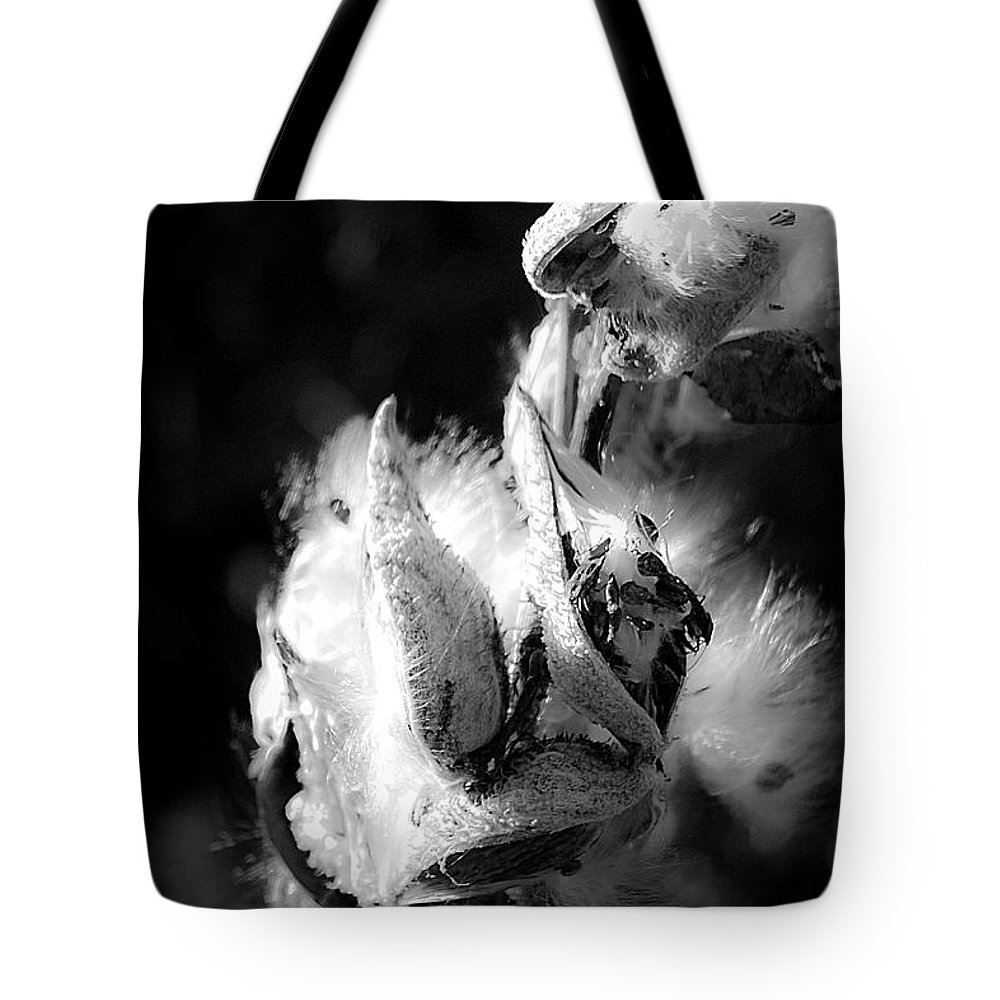 Seed Tote Bag featuring the photograph Gone To Seed Milkweed 1 by Teresa Mucha
