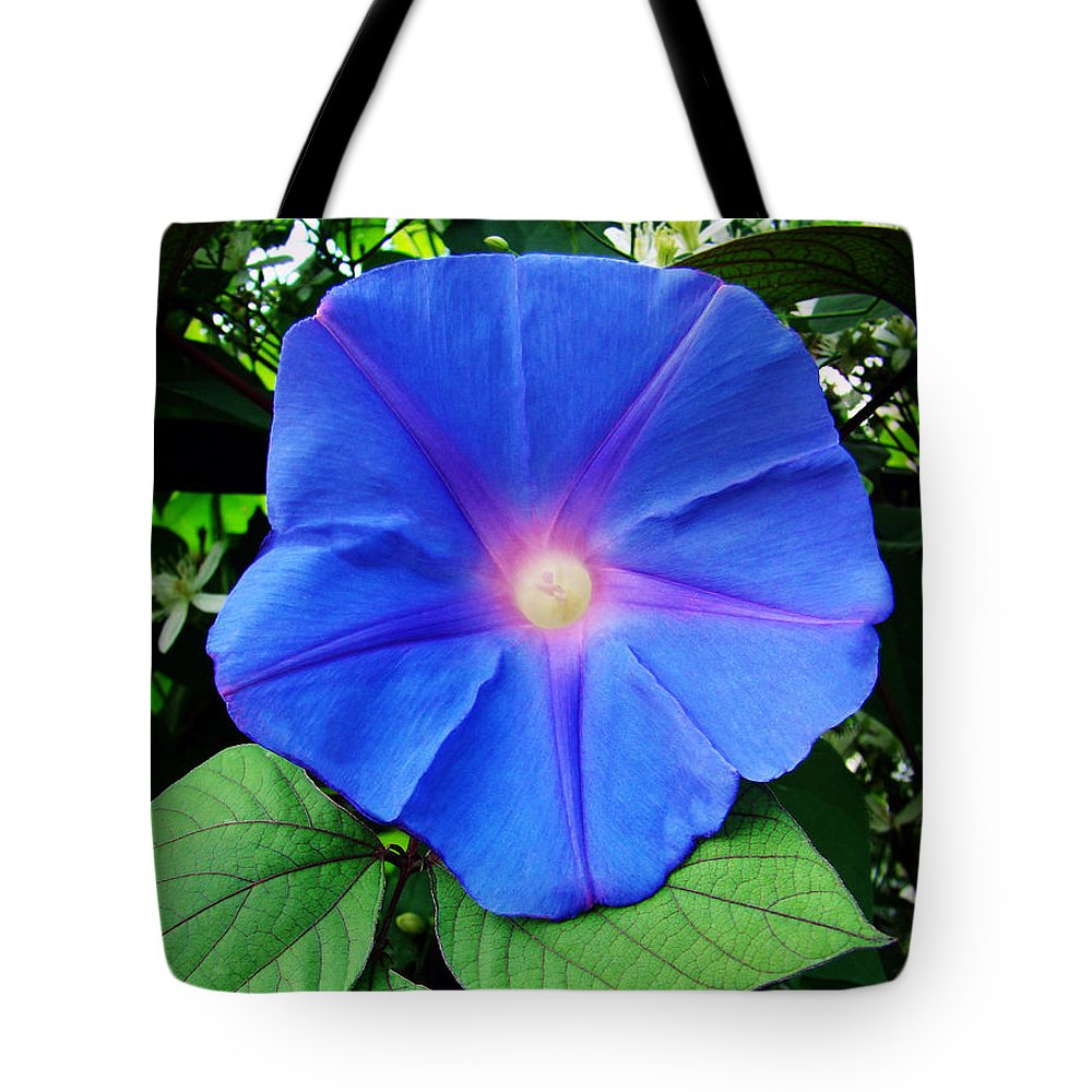 Flower Tote Bag featuring the photograph Good Morning by Sue Melvin