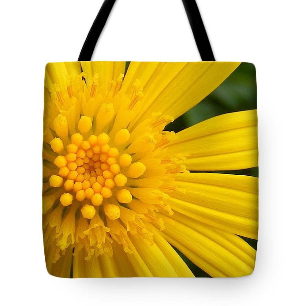 Good Morning Sunshine Tote Bag featuring the photograph Good Morning Sunshine by Ed Smith
