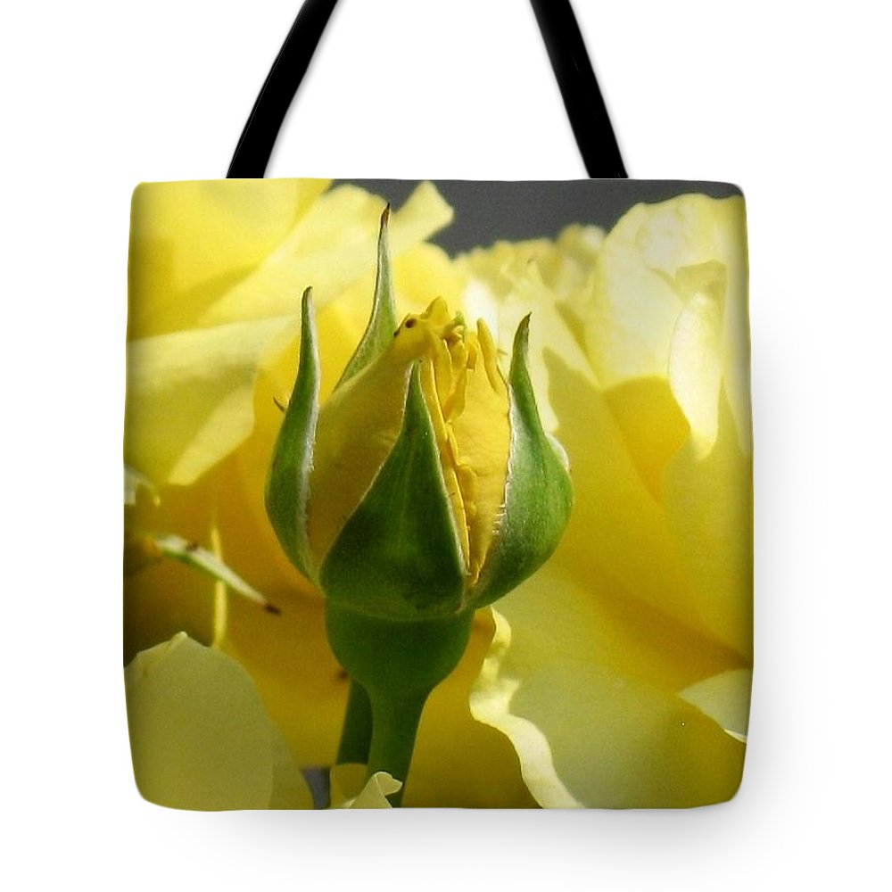 Floral Tote Bag featuring the photograph Good Morning Sunshine by Marla McFall