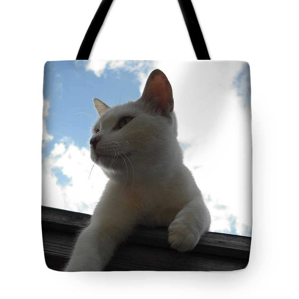 Cat Tote Bag featuring the photograph Goodbye Blue Sky by Mandy Shupp