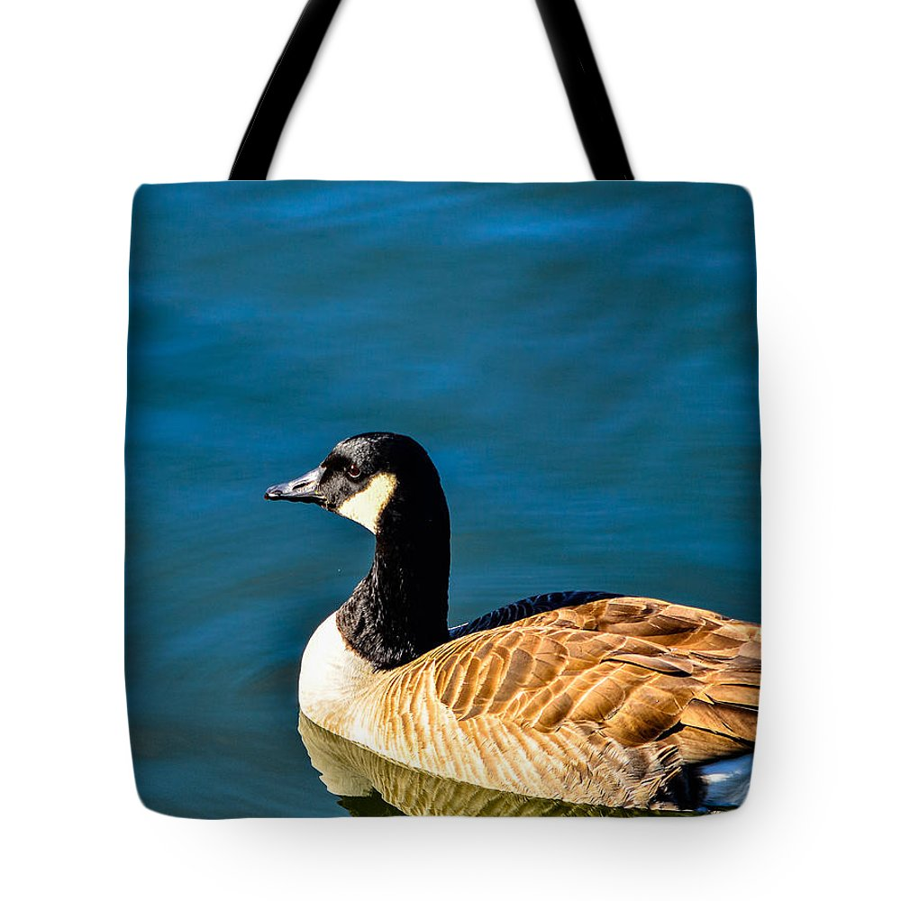 Water Tote Bag featuring the photograph Goose Reflection by AE Jones