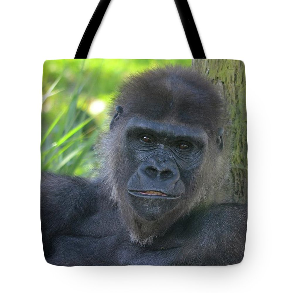 Gorilla Tote Bag featuring the photograph Gorgeous Gorilla by Richard Bryce and Family