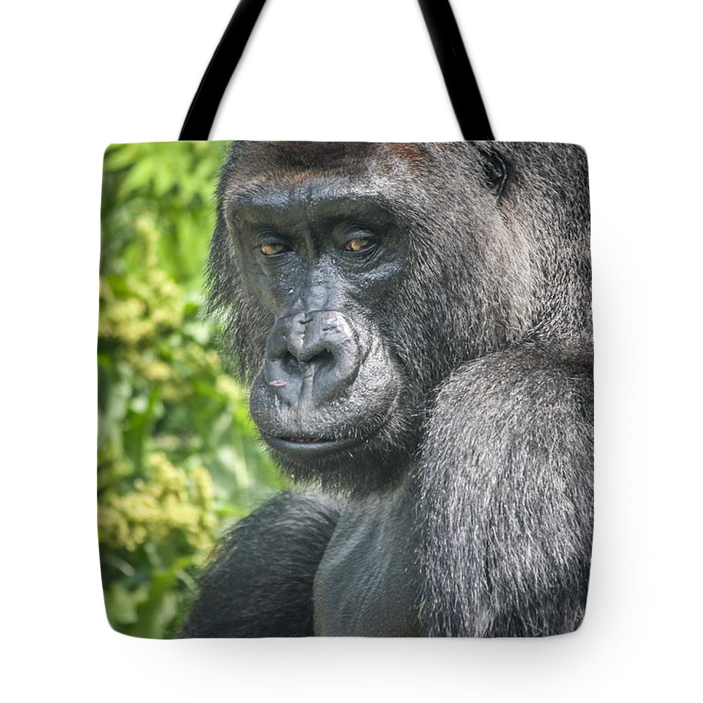 Gorilla Tote Bag featuring the photograph Gorilla by Lynn Sprowl