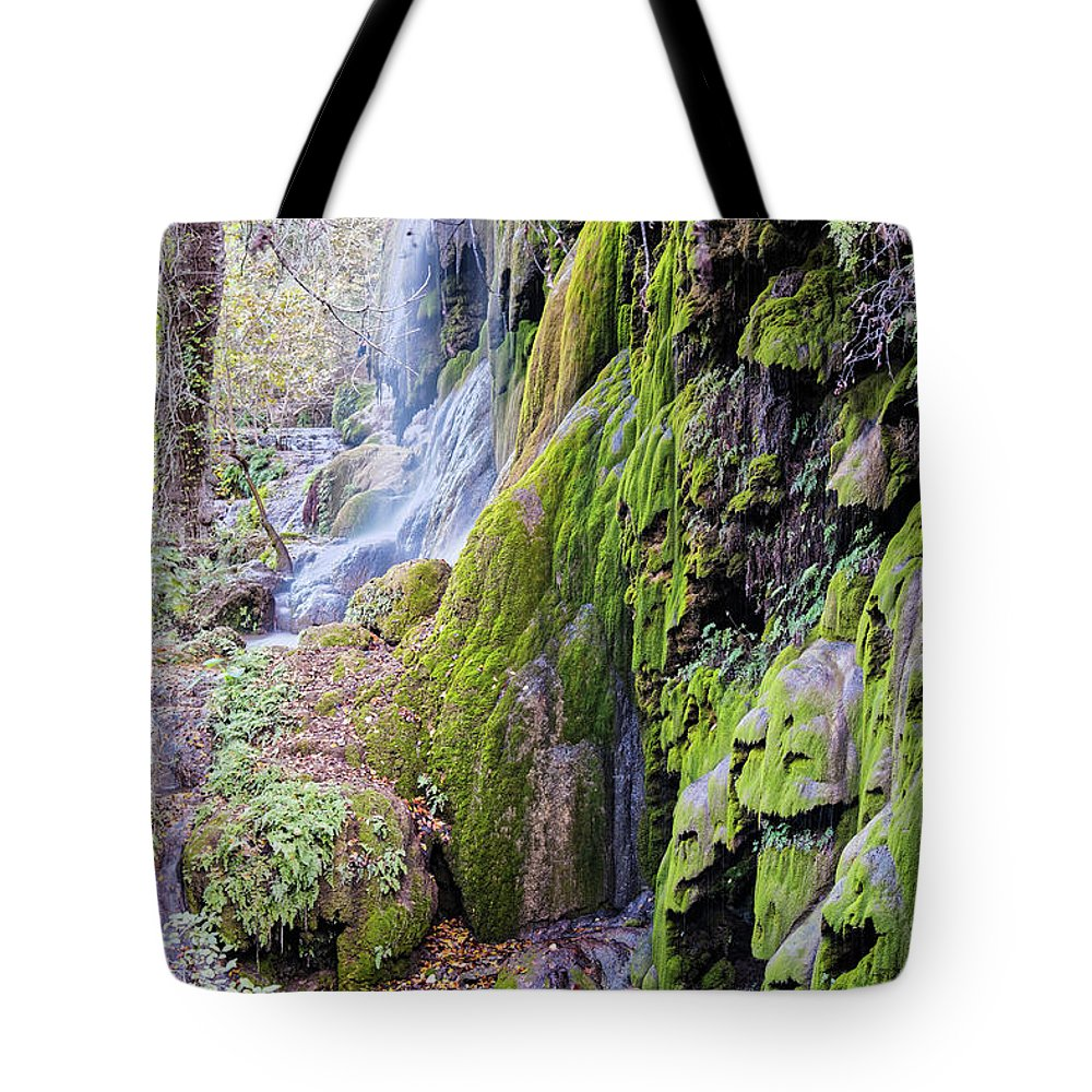 Central Tote Bag featuring the photograph Gorman Falls At Colorado State Park II - San Saba Texas Hill Country by Silvio Ligutti