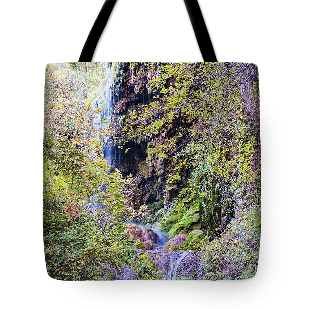 Central Tote Bag featuring the photograph Gorman Falls At Colorado State Park IIi - San Saba Texas Hill Country by Silvio Ligutti