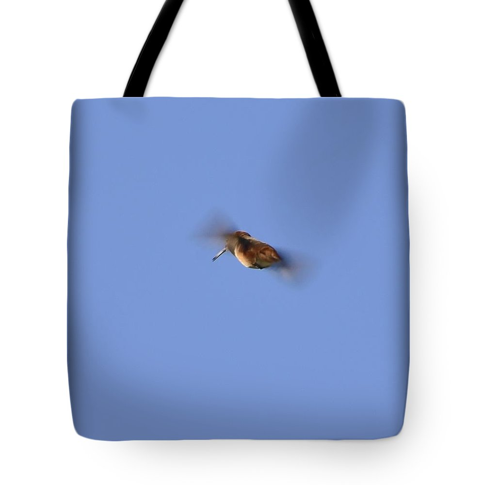Linda Brody Tote Bag featuring the photograph Gotta Go Fast I by Linda Brody