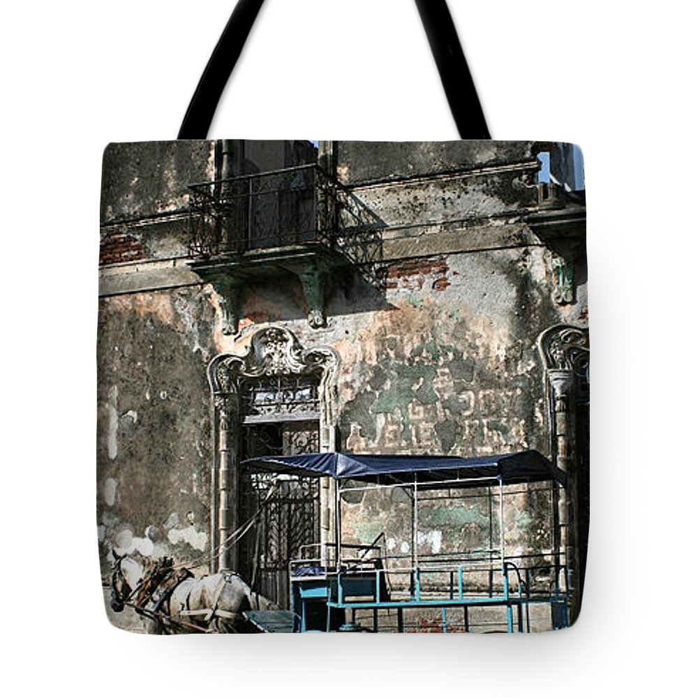 Horse Tote Bag featuring the photograph Goyas Horse by Gaston B Duarte