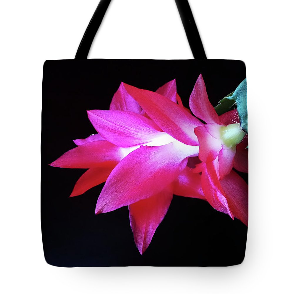 Christmas Cactus Tote Bag featuring the photograph Gracefulness Of One Flower by Jasna Dragun