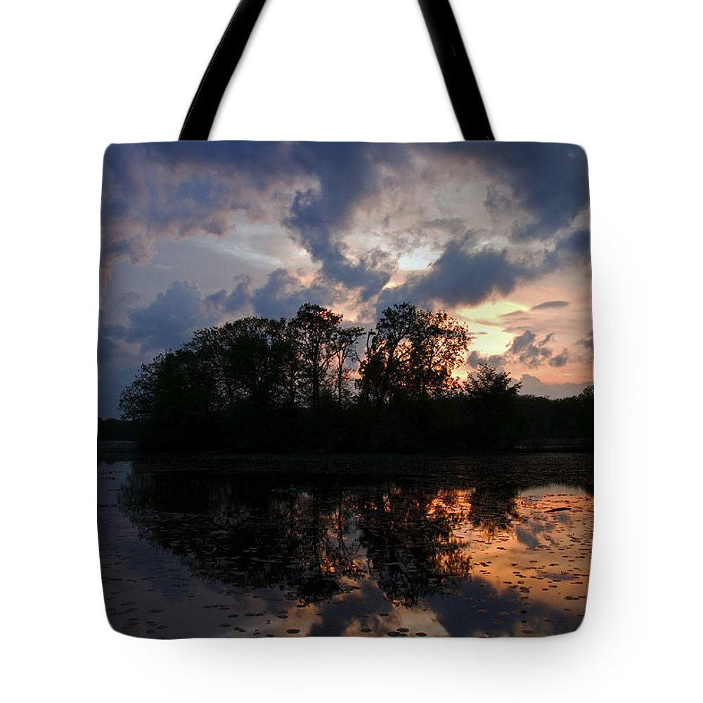 Gracious Tote Bag featuring the photograph Gracious by Heather Kenward