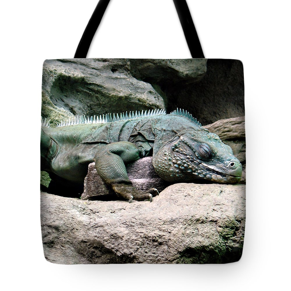 Lizard Tote Bag featuring the photograph Grand Cayman Blue Iguana by Angelina Tamez
