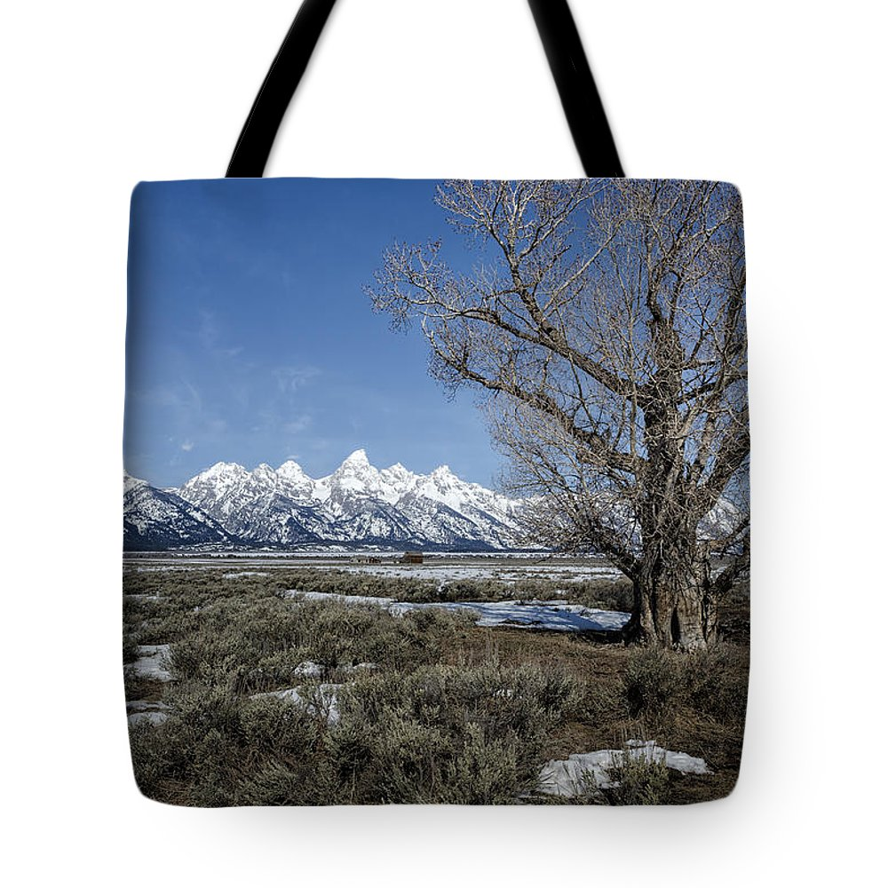 Grand Tetons Tote Bag featuring the photograph Grand Tetons From Gros Ventre by Belinda Greb