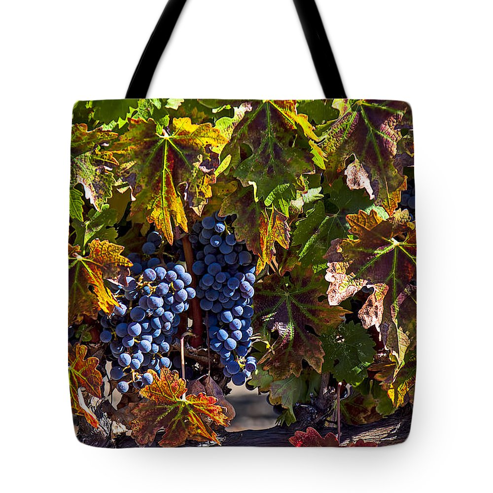Grapes Tote Bag featuring the photograph Grapes Of The Napa Valley by Garry Gay