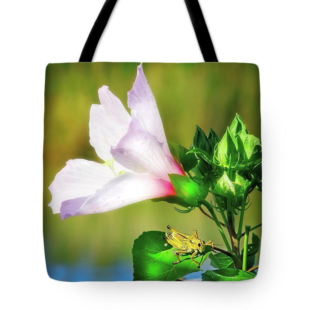 Lubber Grasshopper Tote Bag featuring the photograph Grasshopper And Flower by Mark Andrew Thomas