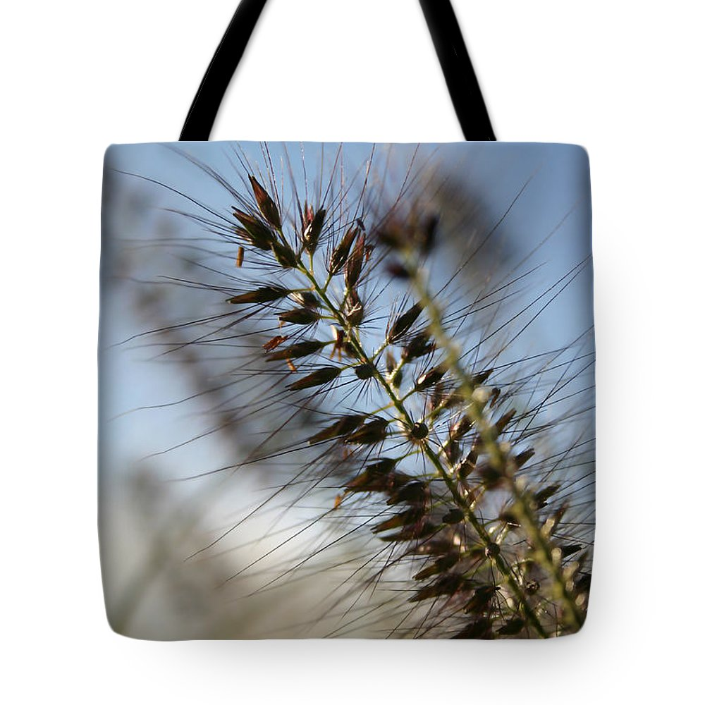 Landscape Tote Bag featuring the photograph Grassy by Mary Haber