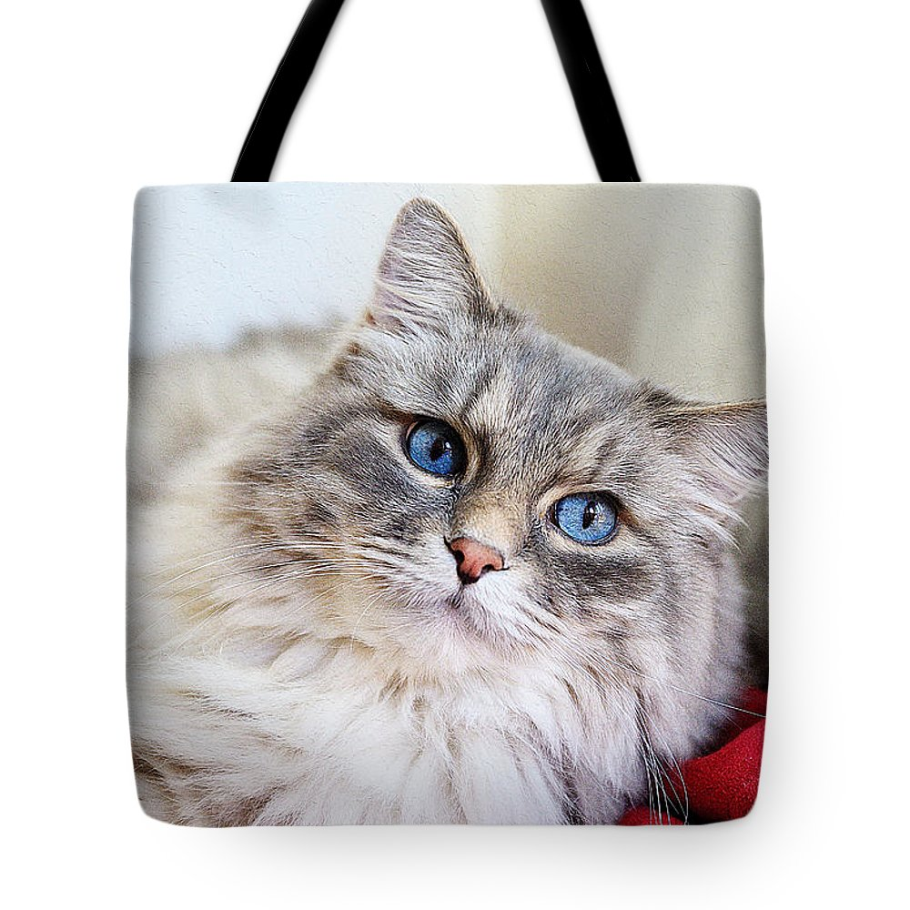Cat Art Tote Bag featuring the painting Gray Cat With Green Eyes by Queso Espinosa