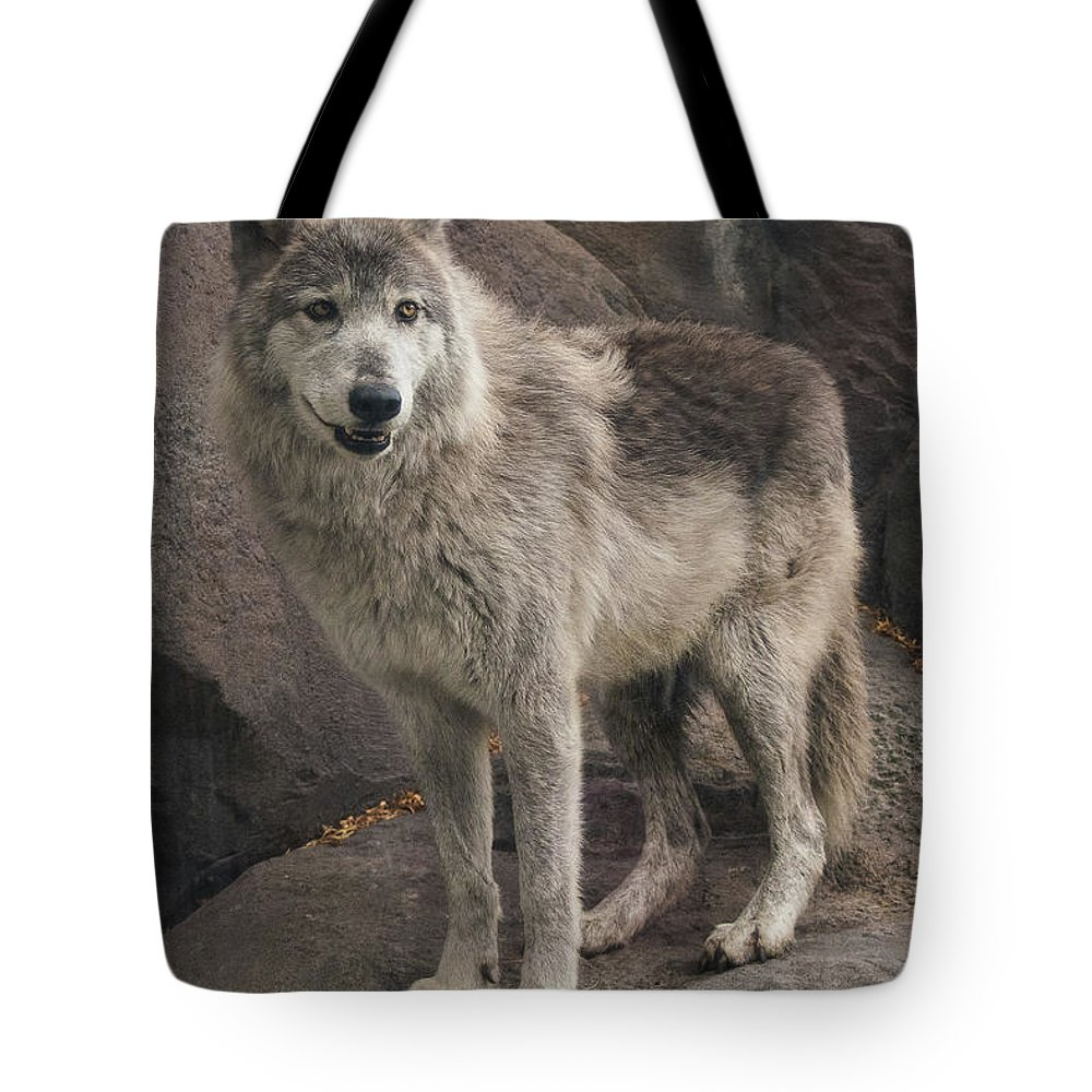 Gray Wolf Tote Bag featuring the photograph Gray Wolf On A Rock by Joan Wallner
