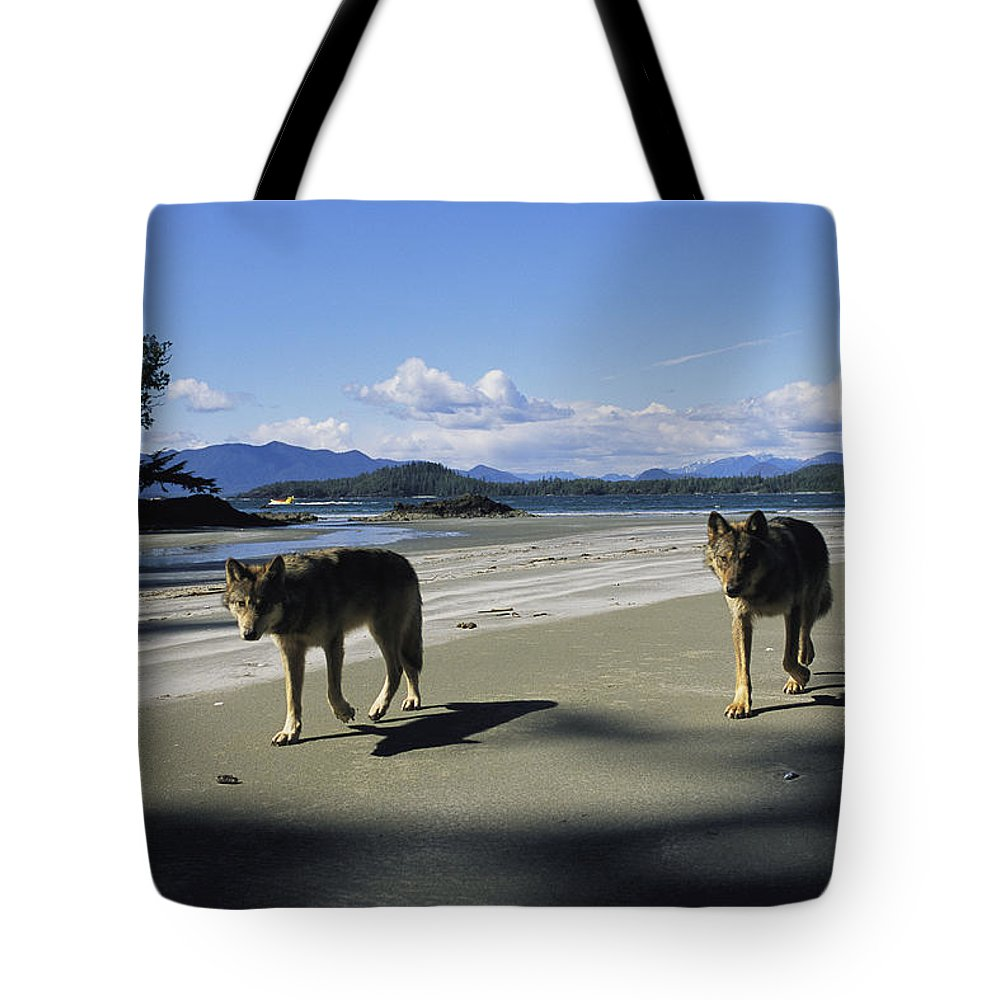 Pacific Ocean Tote Bag featuring the photograph Gray Wolves On Beach by Joel Sartore