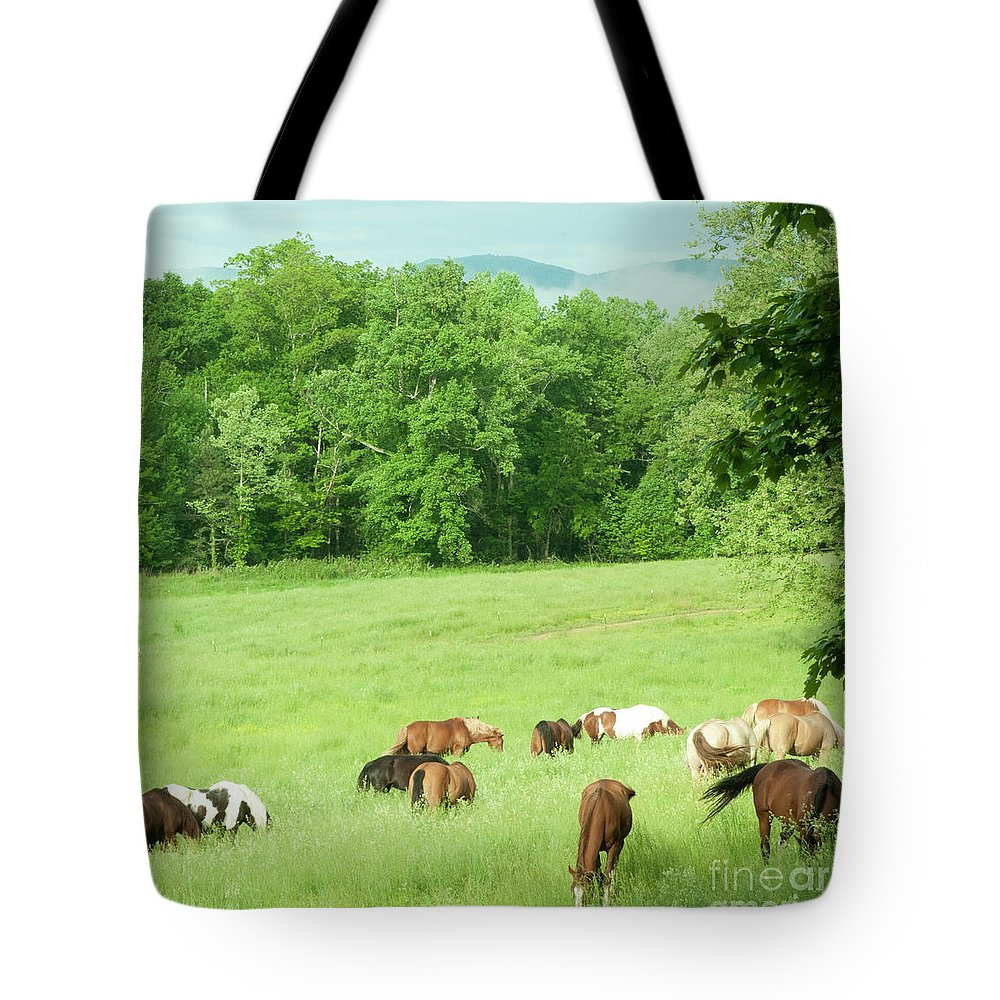 Horses Tote Bag featuring the photograph Grazing In The Morning by Barbara Rabek