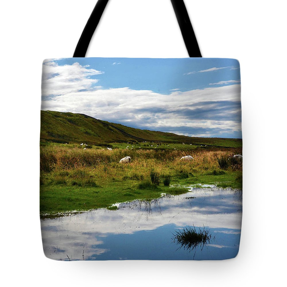 Sheep Tote Bag featuring the photograph Grazing Sheep by Coleman Mattingly