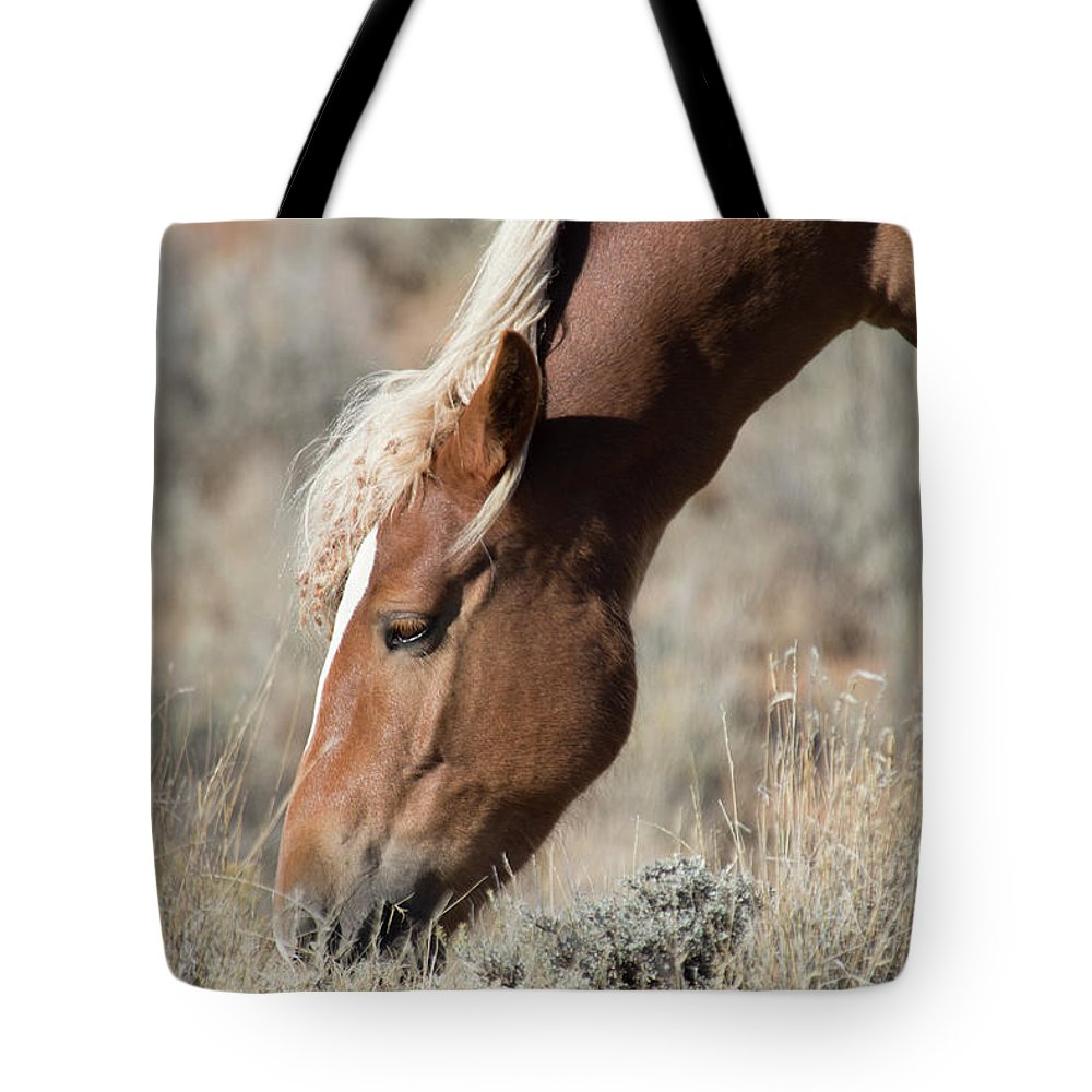 Cody Tote Bag featuring the photograph Grazing Wild Horse by Frank Madia
