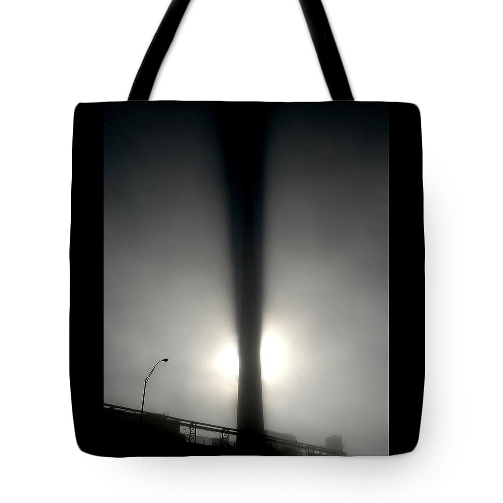 Beast Tote Bag featuring the photograph Something In The Way by M Pace