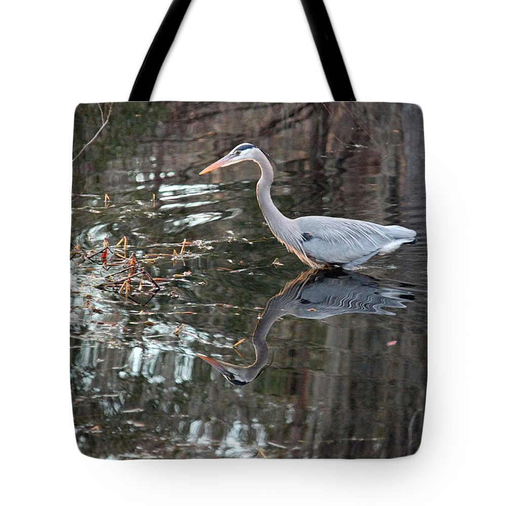 Great Blue Heron Tote Bag featuring the photograph Great Blue Heron And Reflection IIi by Suzanne Gaff