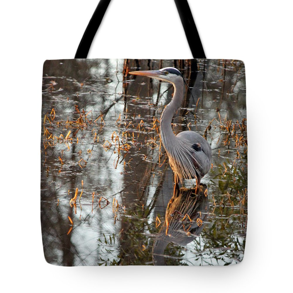 Great Blue Heron Tote Bag featuring the photograph Great Blue Heron And Reflection by Suzanne Gaff