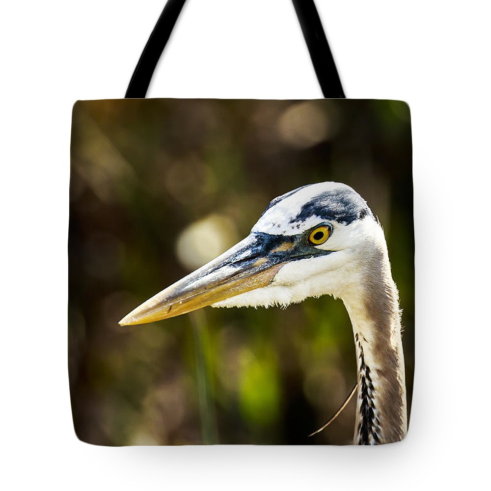 Great Blue Heron Tote Bag featuring the photograph Great Blue Heron At Green Cay by Ben Graham