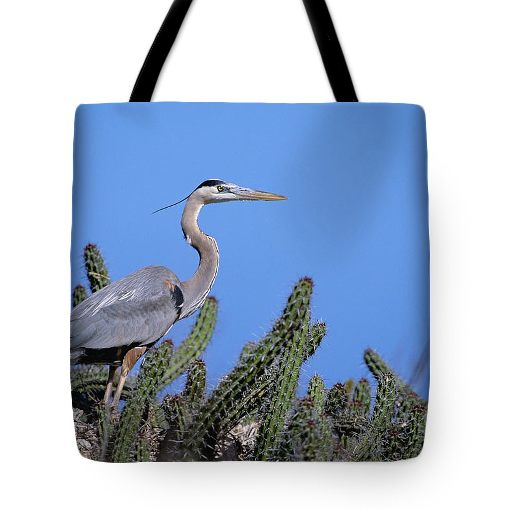 Animal Art Tote Bag featuring the photograph Great Blue Heron by John Hyde - Printscapes