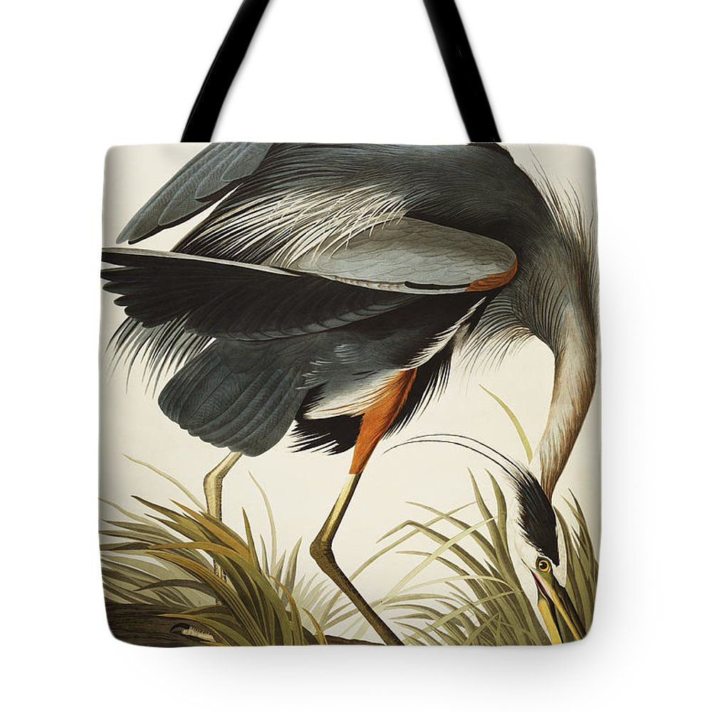 Great Blue Heron Tote Bag featuring the drawing Great Blue Heron by John James Audubon