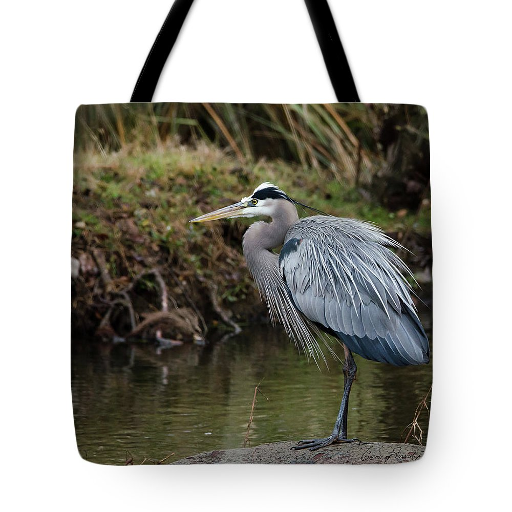 Hero Tote Bag featuring the photograph Great Blue Heron On The Watch by George Randy Bass