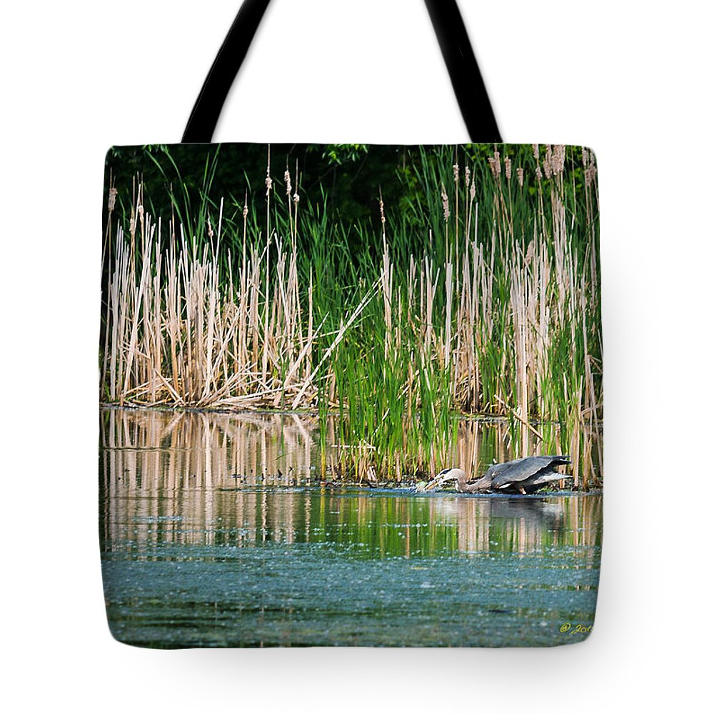 Great Blue Heron Tote Bag featuring the photograph Great Blue Heron Strike by Edward Peterson