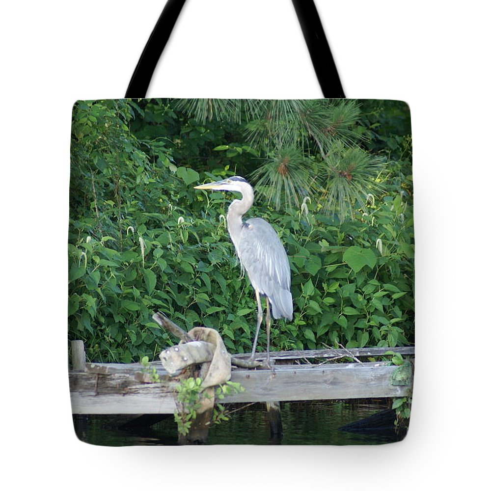 Great Blue Heron Tote Bag featuring the photograph Great Blue by Kathryn Launey