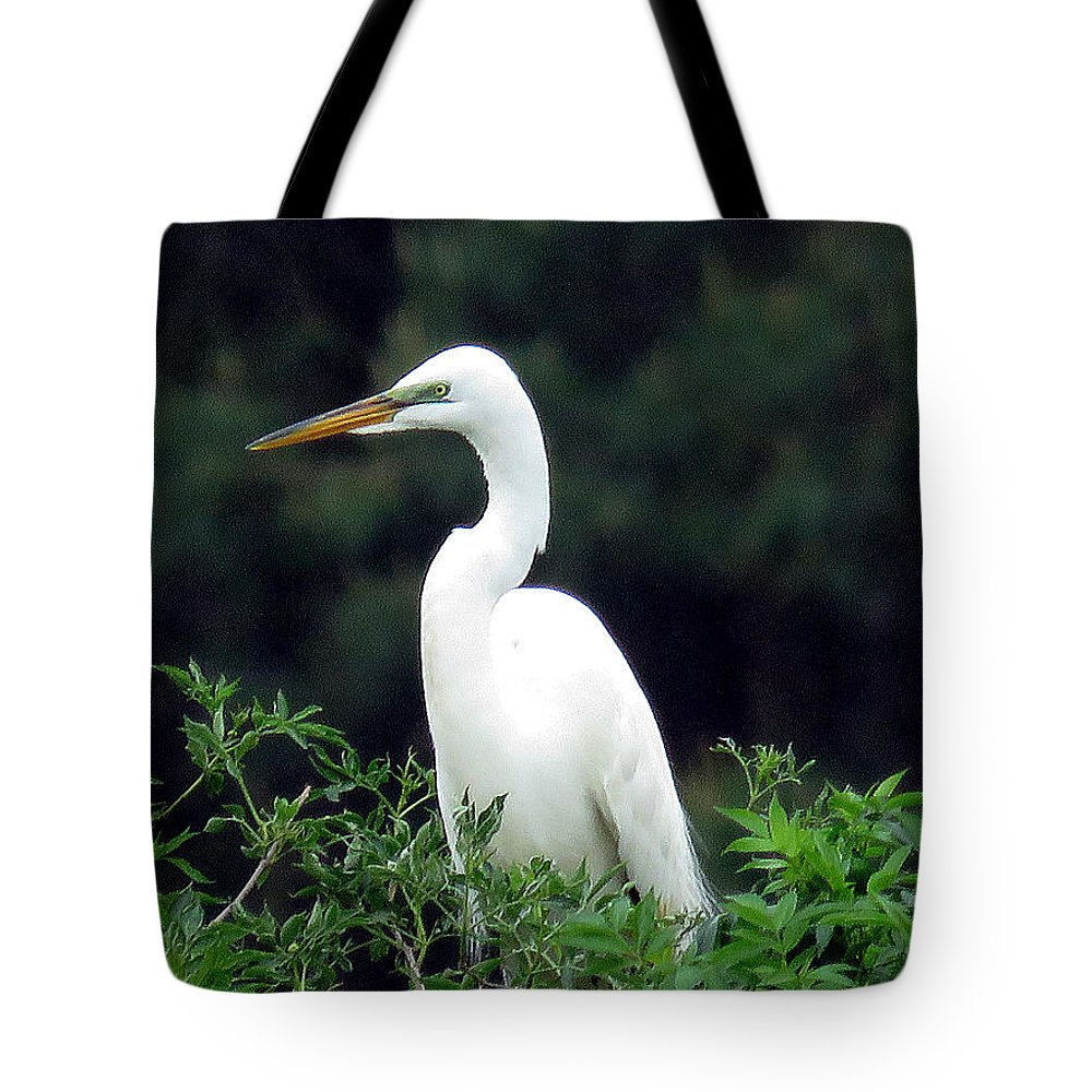 Egret Tote Bag featuring the photograph Great Egret 19 by J M Farris Photography