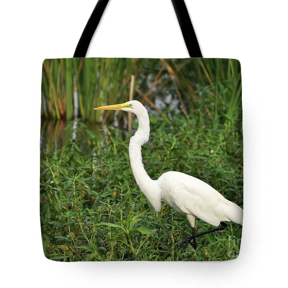 Great Egret Tote Bag featuring the photograph Great Egret Walking by Al Powell Photography USA