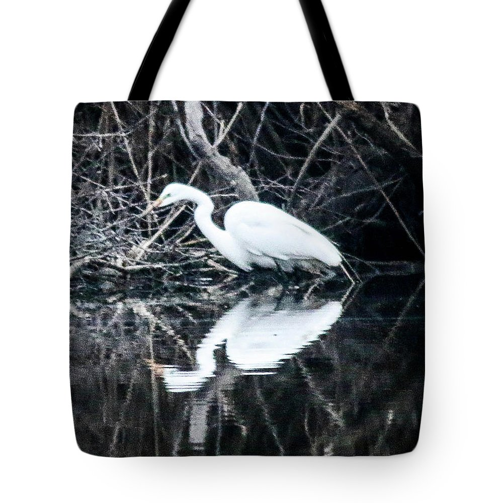 The Great Egret (ardea Alba) Tote Bag featuring the photograph Great Egret by William Rogers