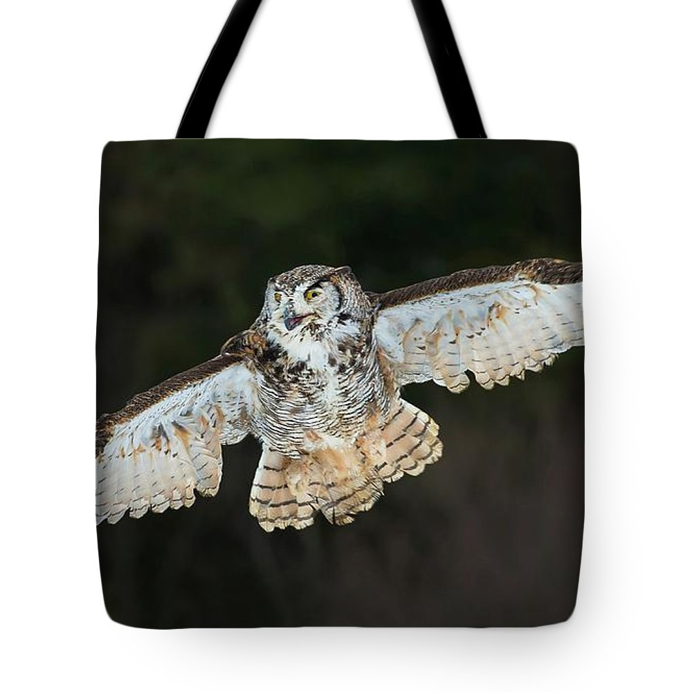 Owls Tote Bag featuring the photograph Great Horned Owl by CR Courson