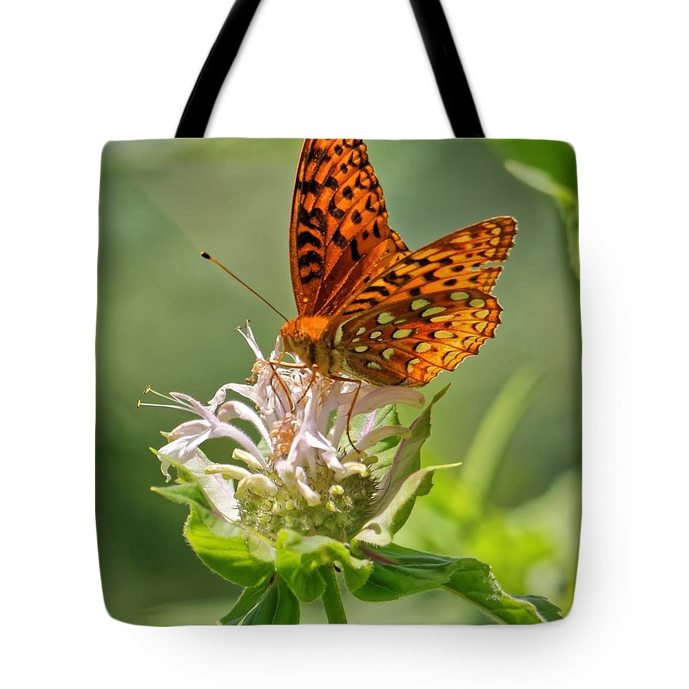 Great Spangled Fritillary Tote Bag featuring the photograph Great Spangled Fritillary On Bee Balm by David Rowe