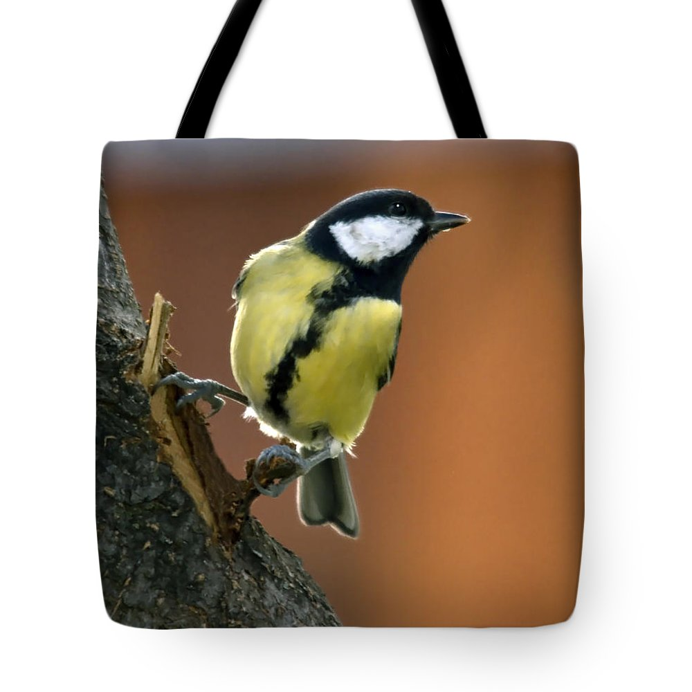 Great Tit Tote Bag featuring the photograph Great Tit by Cliff Norton