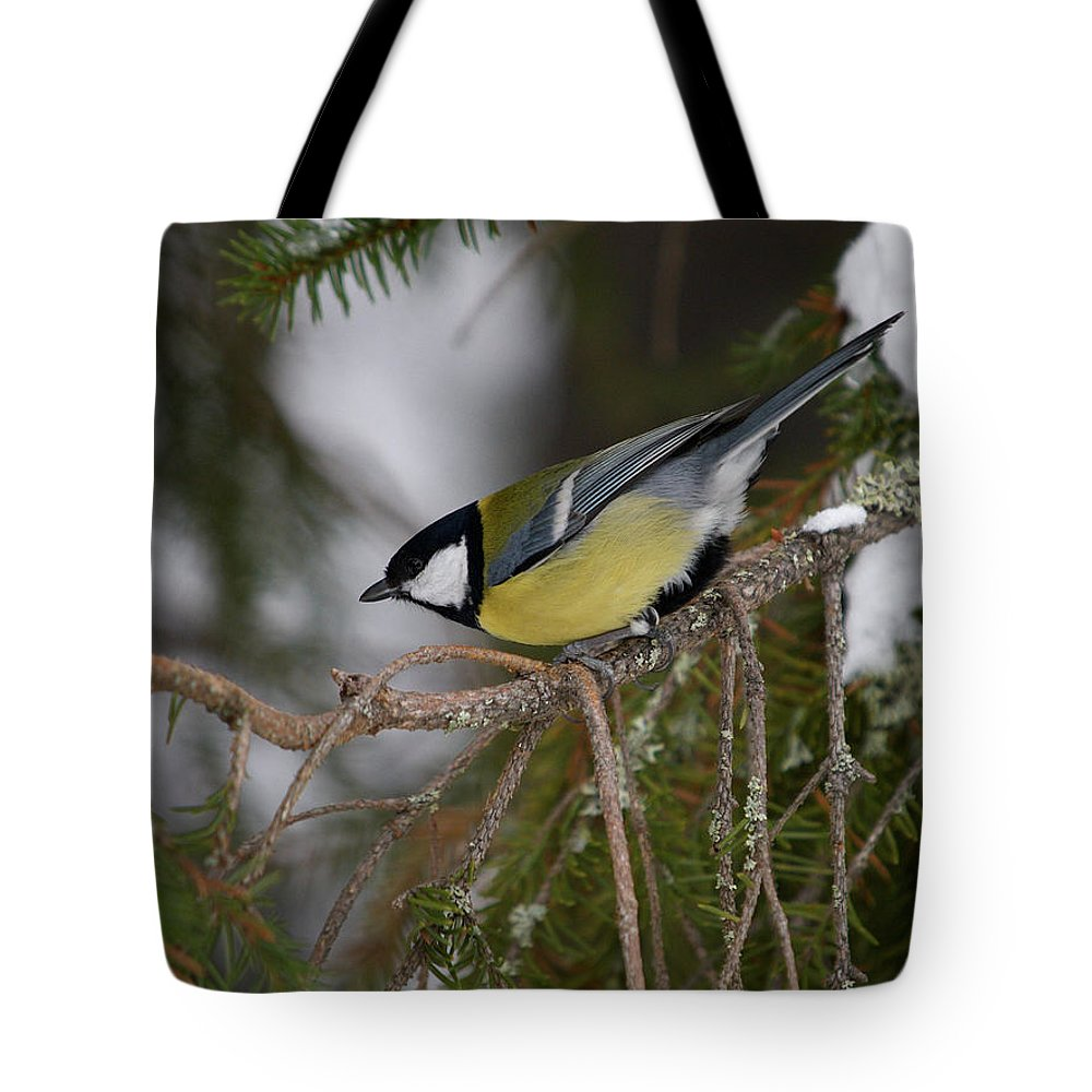 Lehtokukka Tote Bag featuring the photograph Great Tit by Jouko Lehto