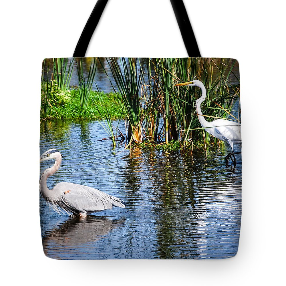 Wildlife Tote Bag featuring the photograph Great White And Great Blue by Rupert Chambers