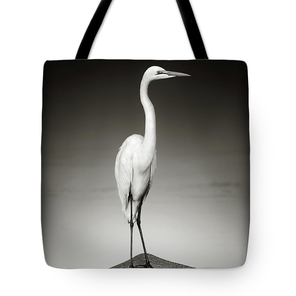 Egret Tote Bag featuring the photograph Great White Egret On Hippo by Johan Swanepoel