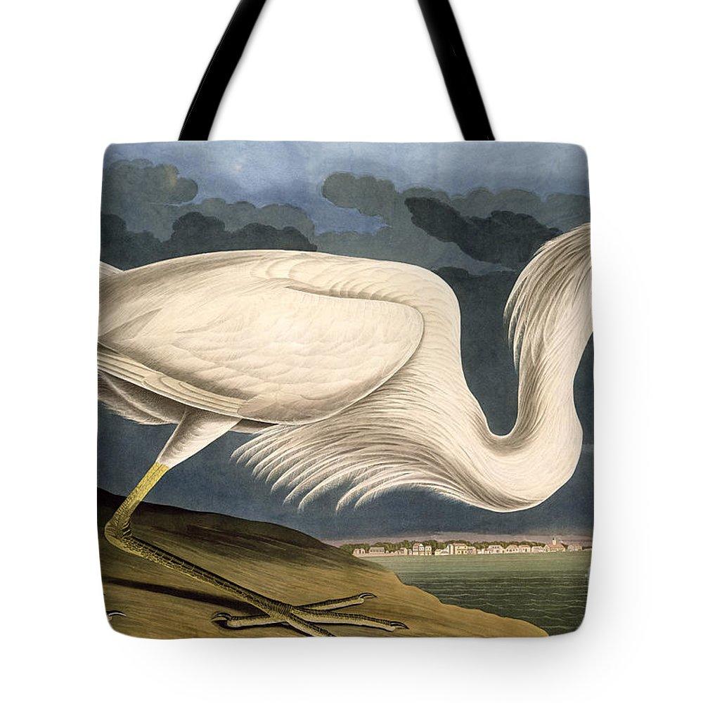 Great White Heron Tote Bag featuring the drawing Great White Heron by John James Audubon