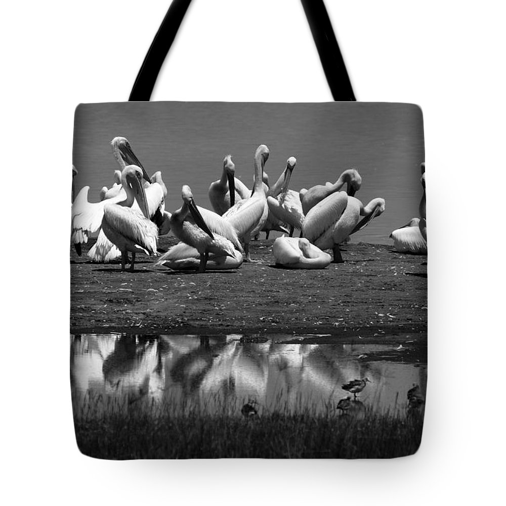 Pelican Tote Bag featuring the photograph Great White Pelicans, Lake Nakuru, Kenya by Aidan Moran