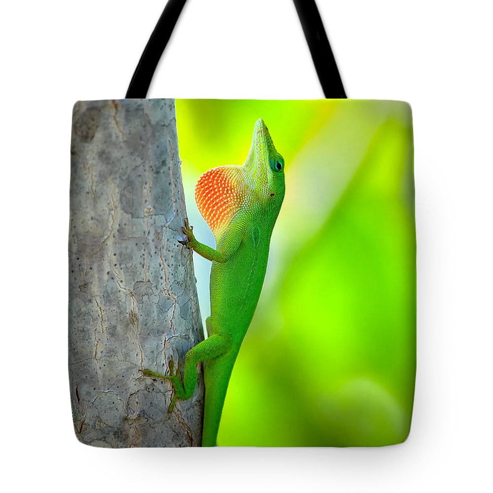 Lizard Tote Bag featuring the photograph Green Anole by Rich Leighton