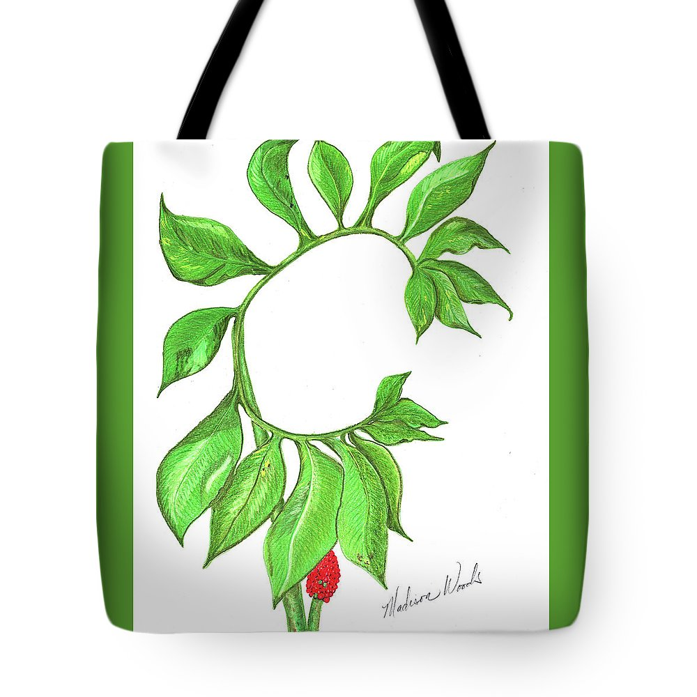 Woodland Plant Tote Bag featuring the photograph Green Dragon With Fruit Cluster by Madison Woods