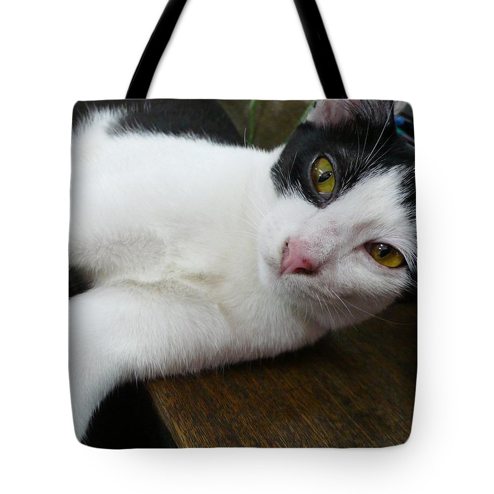 Cat Tote Bag featuring the photograph Green Eyes by Gregory Smith